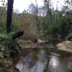 Proctor Creek near Jackson Pkwy