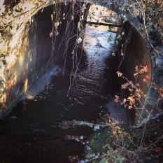 Proctor Creek flowing under North Avenue in the Bankhead neighborhood