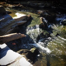 Whitewater on Proctor Creek