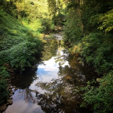 View of Proctor Creek from a bridge in Grove Park