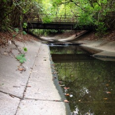 Greensferry tributary flowing under a forgotten bridge towards the mainstem of Proctor Creek