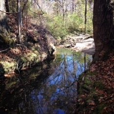 The tributary that flows through the Knight Park/Howell Station neighborhood just before it meets the Proctor Creek mainstem
