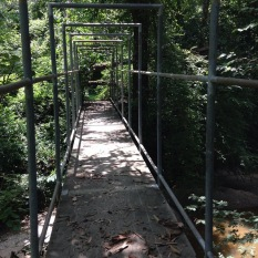Lost bridge over Proctor Creek between West Highlands and Gun Club Park