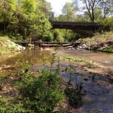 Springtime view of Proctor Creek looking upstream at Johnson Rd