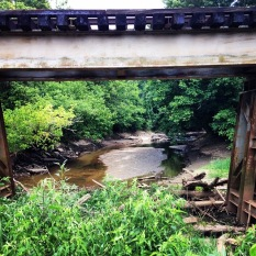 Looking up Proctor Creek from the Chattahoochee River